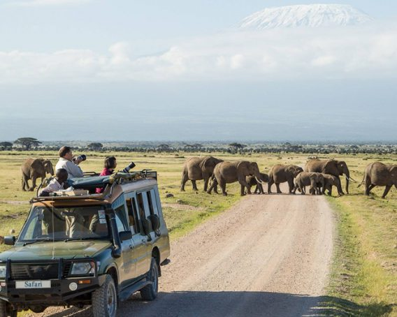 Best of Kenya Amboseli National Park