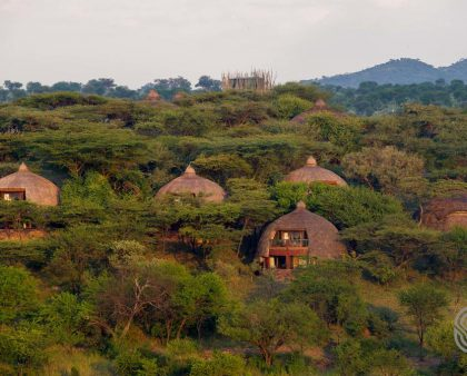 Serengeti Lodge view